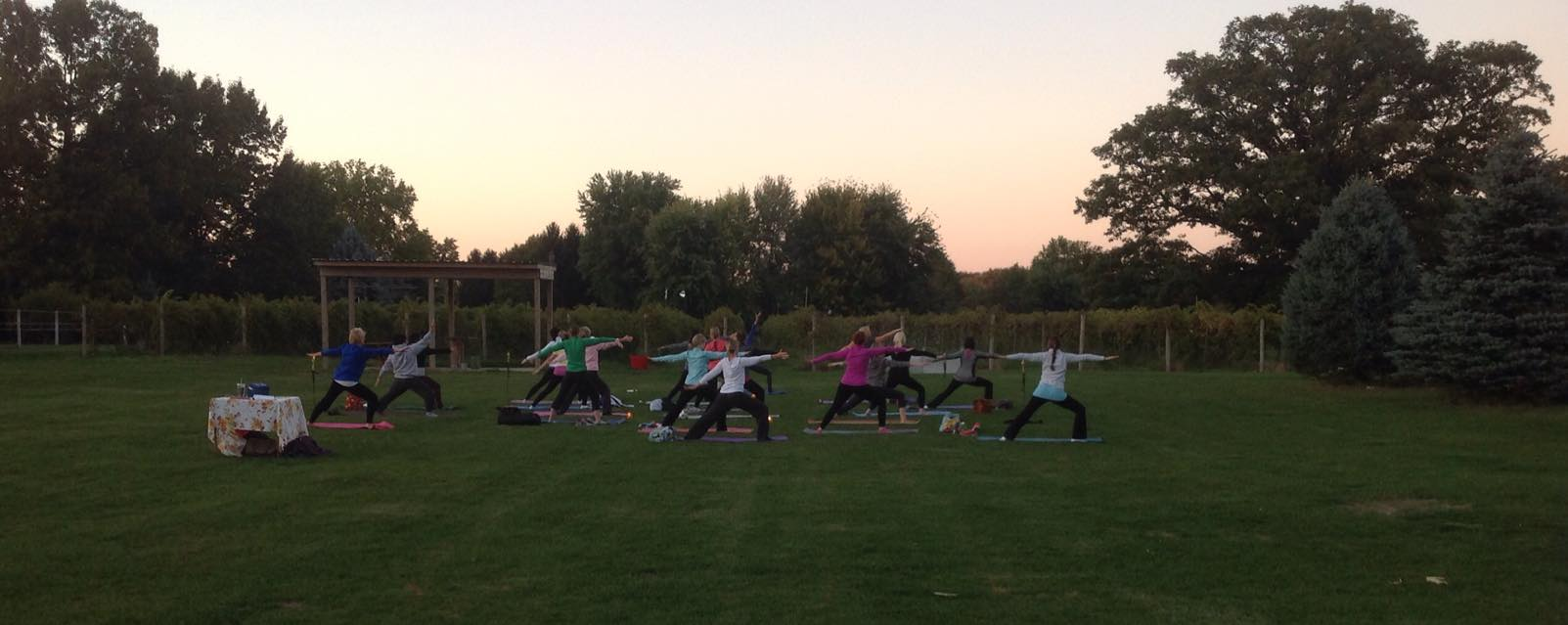 Yoga at the winery.jpg