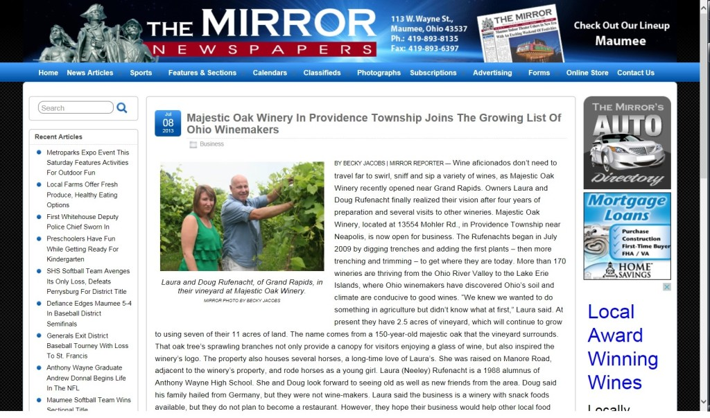 Mirror Article 2013